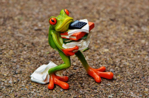 Stressed Froggy